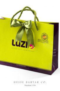 Hand-Bag-Hesse-Bartar-205x308 Shopping Bag - Luzi -1394