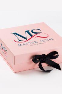 MS-M-1-205x308 Logo - MS - 1394