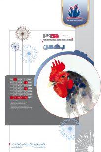 11-205x308 Calendar - Koshtargah Pak - 1389