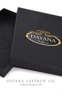Logo – Dayana – 1391