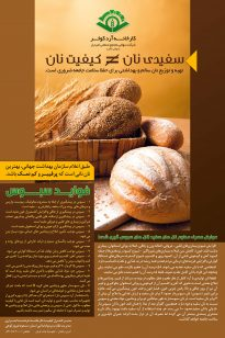 Poster-2-205x308 Poster - Kosar - 1391