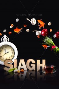 Siagh2-13-205x308 Photo Creative - Siagh - 1395