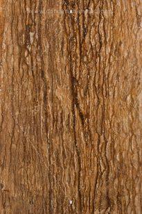NabovatStone-5-205x308 Photo Indusrtial - Nabovat - 1393