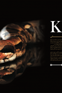 Screen-Shot-2019-04-14-at-10.11.41-AM-205x308 Magazine - KishAir - 95-9