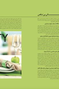 Screen-Shot-2019-04-16-at-12.24.02-PM-205x308 Magazine - KishAir - 95-5