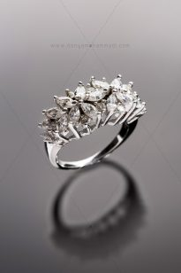 Jewelley-4-205x308 Photo Jewelry - Ring - 1396