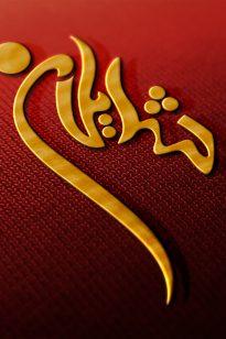 Logo – Shaylan – 1388