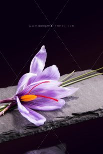 Saffron-Arnika-7-205x308 Photo Food - Arnika Flower - 1397